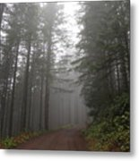 Red Dirt Road Metal Print