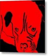 Red Dog Metal Print