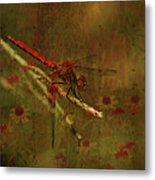 Red Dragonfly Dining Metal Print