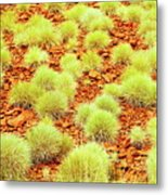 Red Earth And Spinifex 2am-111716 Metal Print