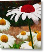 Red Eyed Daisy Metal Print