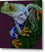Red Eyed Tree Frog Original Oil Painting 4x6in Metal Print