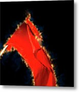 Red Flag On Black Background Metal Print