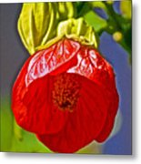 Red Flower At Pilgrim Place  In Claremont-california Metal Print
