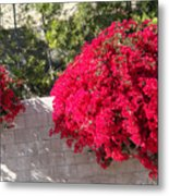 Red Flower Bushes Metal Print