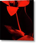 Love For Red Flower #1. Metal Print