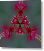 Red Flowers Abstract Metal Print