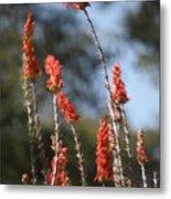 Red Flowers In Clouds Metal Print