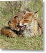 Red Fox Cub Love Metal Print