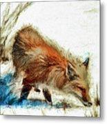 Red Fox Painted Series Metal Print