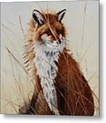 Red Fox Waiting On Breakfast Metal Print