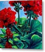 Red Geraniums Metal Print