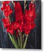 Red Gladiolus In Striped Vase Metal Print