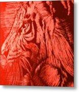 Red Head Tiger Metal Print