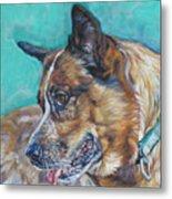 Red Heeler Australian Cattle Dog Metal Print by Lee Ann Shepard