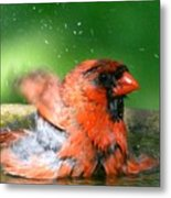 Red Hot Bath Metal Print