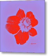 Red Hot Passion Flower Metal Print