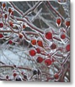 Red Ice Berries Metal Print