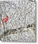 Red In White Metal Print