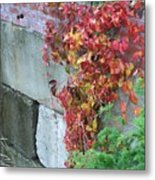 Red Ivy Metal Print