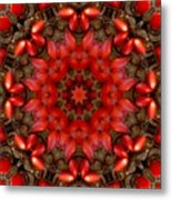 Red Kaleidoscope No. 1 Metal Print
