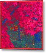 Red Maple 1 Metal Print