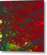 Red Maple 3 Version 1 Metal Print