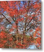 Red Maple Foliage Kaleidoscope Metal Print