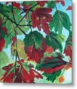 Red Maple Metal Print