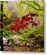 Red Maples Metal Print