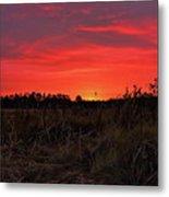 Red Marsh Sunrise Metal Print