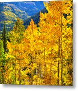 Red Mountain Aspens Metal Print