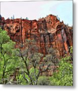 Red Mountains Zion National Park Usa Metal Print