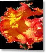 Red N Yellow Flowers Metal Print