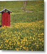 Red Outhouse 6 Metal Print