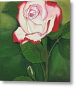 Red-pink Rose Metal Print