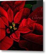 Red Poinsettia Merry Christmas Card Metal Print