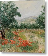 Red Poppies In The Olive Garden Metal Print