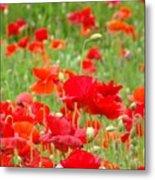 Red Poppy Flowers Meadow Art Prints Poppies Baslee Troutman Metal Print