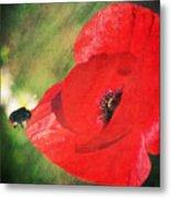 Red Poppy Impression Metal Print