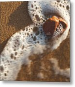 Red Rock And Surf Metal Print