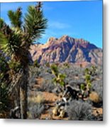 Red Rock Canyon Joshua Tree 2 Metal Print