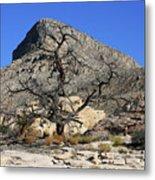 Red Rock Canyon Nv 1 Metal Print