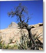 Red Rock Canyon Nv 10 Metal Print