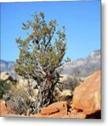 Red Rock Canyon Nv 4 Metal Print