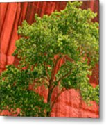 Red Rock Green Tree Metal Print