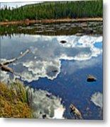Red Rock Lake Fall Study 2 Metal Print