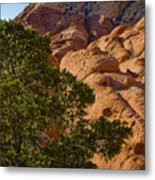 Red Rock Textures Metal Print
