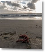 Red Rope On The Beach Metal Print