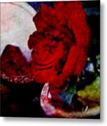 Red Rose And The Mirror Metal Print